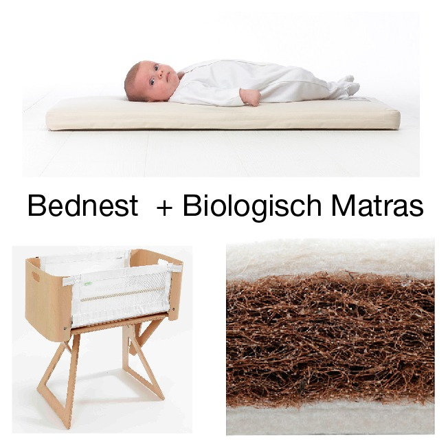 Bednest Moses basket Co-sleeper